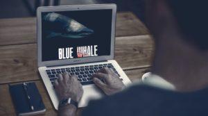 blue-whale-techshohor